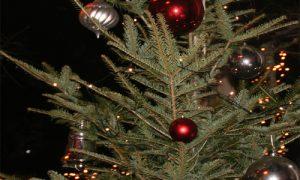 Weihnachten 2013